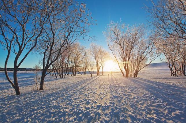 冬季雪景拍摄
